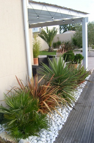 Massifs for Plante contemporaine